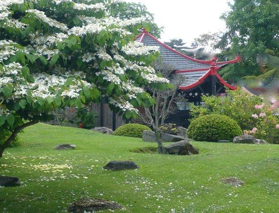 jardin asiatique picture of jardin d 39 acclimatation paris tripadvisor. Black Bedroom Furniture Sets. Home Design Ideas