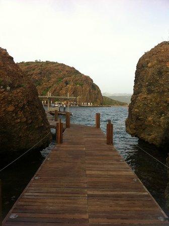D Maris Bay: bay