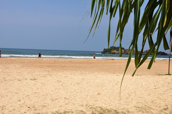 The Palms Hotel: The hotel beach