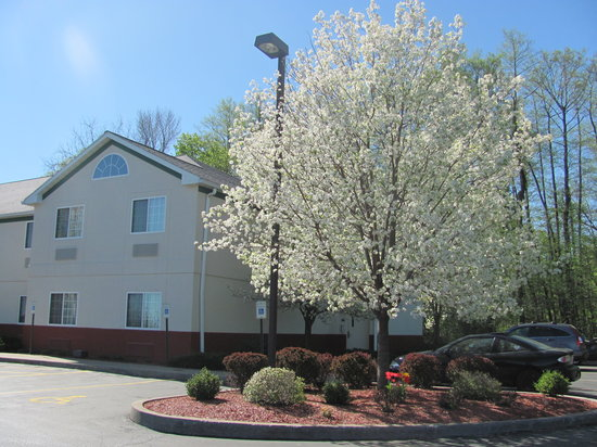 Dollinger's Inn & Suites: Could spring be here?