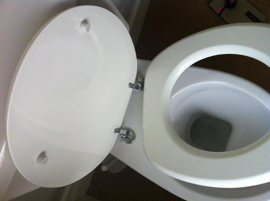 Garden Lodge Hotel: Toilet