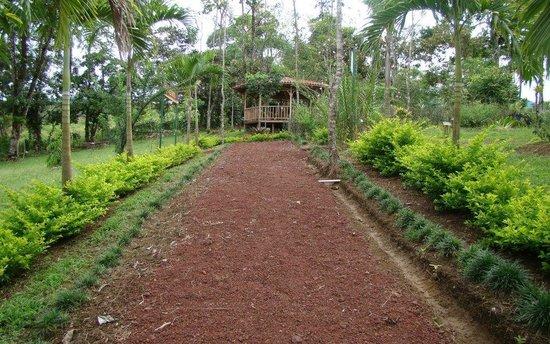 Villas Josipek: Jardín Botánico
