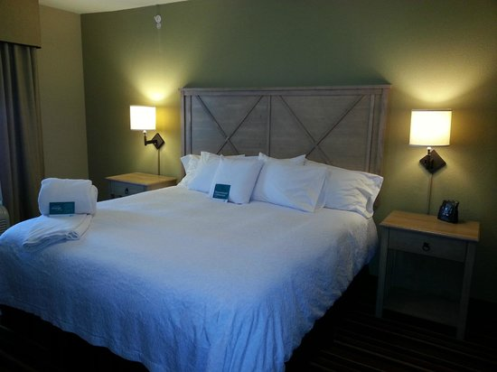 Homewood Suites by Hilton Austin / Round Rock: King Bed