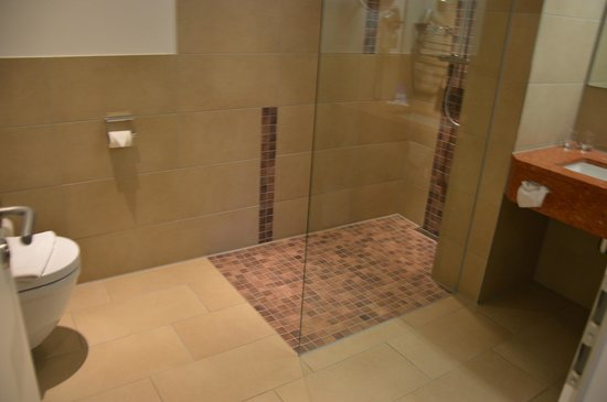 Hotel-Restaurant Bullerdieck: Shower