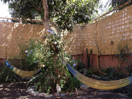 Hostel Nasca Trails: Garden