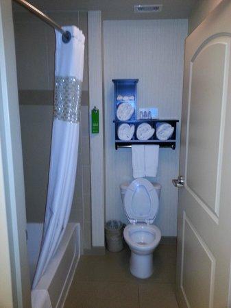 Hampton Inn & Suites Bay City: Bath
