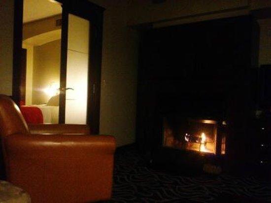 Le Saint-Sulpice: Fireplace