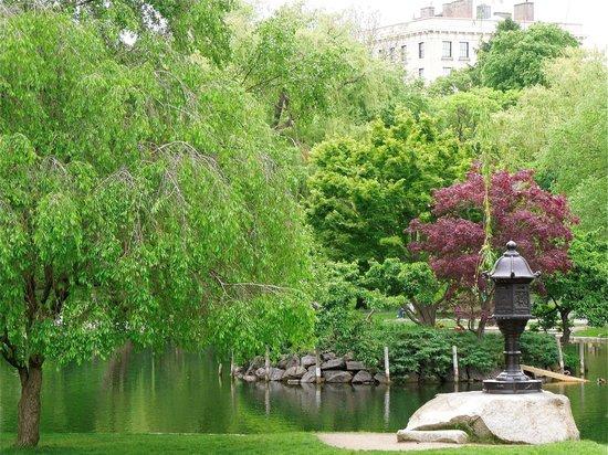 Garden In The Spring Picture Of Boston Public Garden