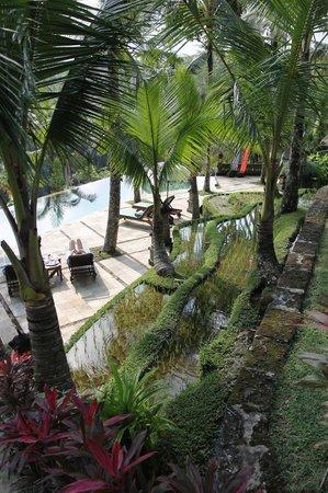 Toya Retreat: Beautiful