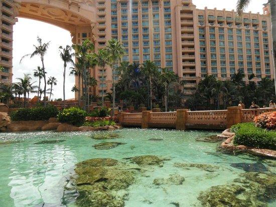 Marine Habitat at Atlantis: Lagoon
