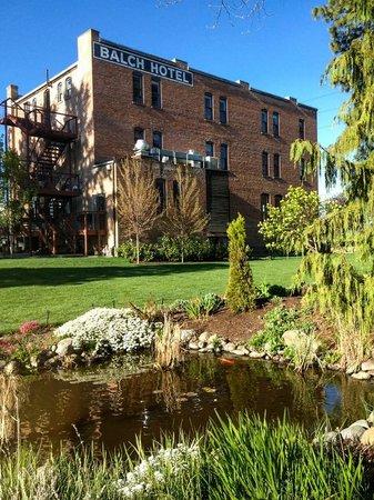 Balch Hotel: Koi pond
