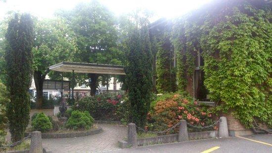 ASIA Restaurant Plum Garden