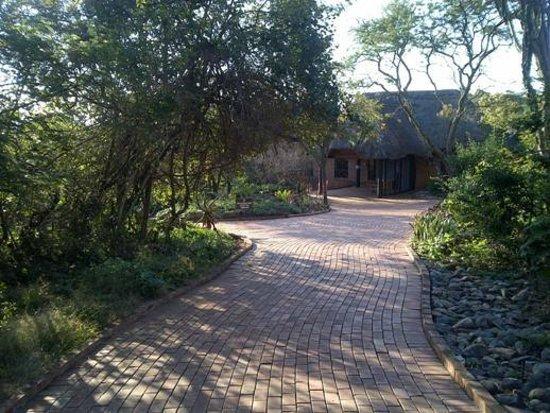 Ntshondwe Lodge: Path to reception
