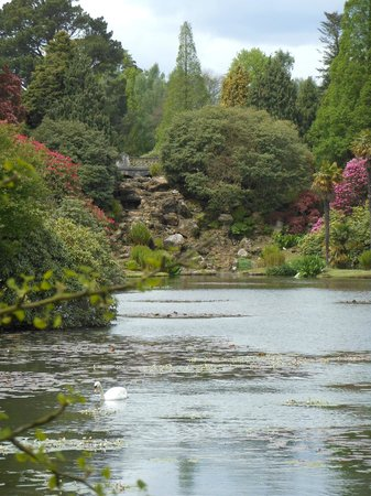 Sheffield Park and Garden: Lake view