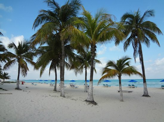 Playa Norte: so nice