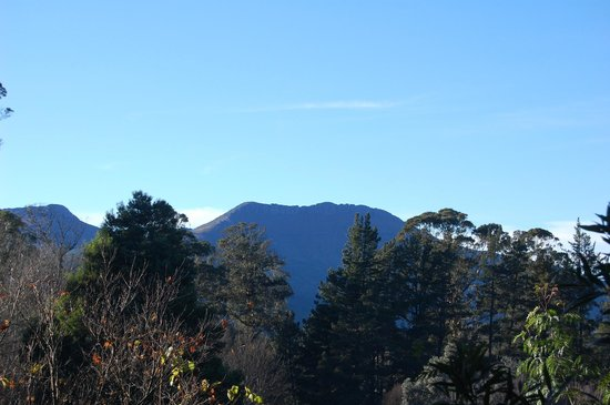 Arminel Hogsback Village: View from hotel
