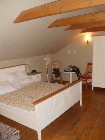 Hotel U Suteru: Room 41