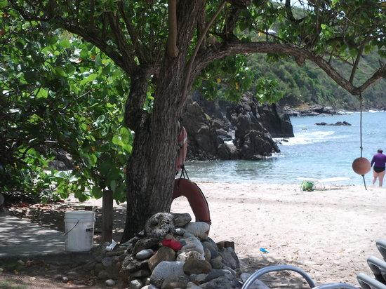 Brewers Bay Tortola