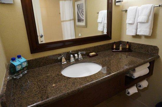 Providence Marriott Downtown : bathroom