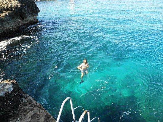 Sea Grape Villas: Sea Grape...One Love!!