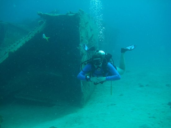 St. Thomas Diving Club: Diver at the Wreck of the Cartanzar, Sr.