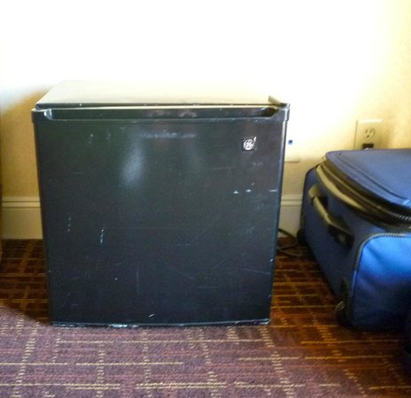 Lombard Motor Inn: Mini fridge