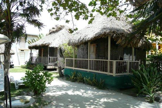 Hotel del Rio: Cabanas