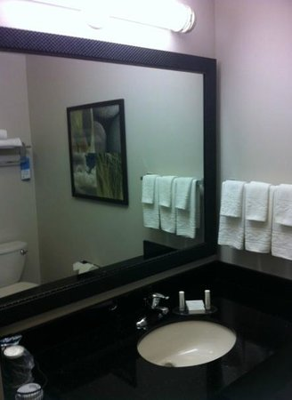 Fairfield Inn & Suites Sault Ste. Marie: Bathroom
