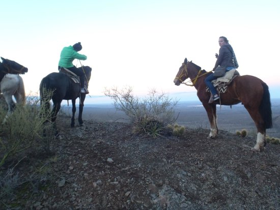 Los Pingos Horse Riding: Top of a mountain on our ride