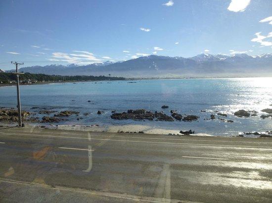 YHA Kaikoura Maui: View