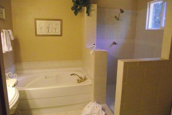 Highland House Bed & Breakfast: spacious bath