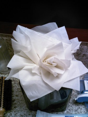 Courtyard Phoenix Chandler/Fashion Center: Tissue Flower in Bathroom
