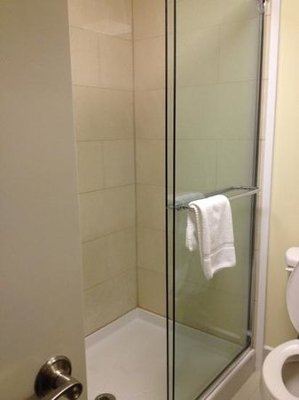 Holiday Inn Express & Suites: shower