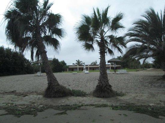 El Condor Club & Beach Resort: entre el hotel y la playa