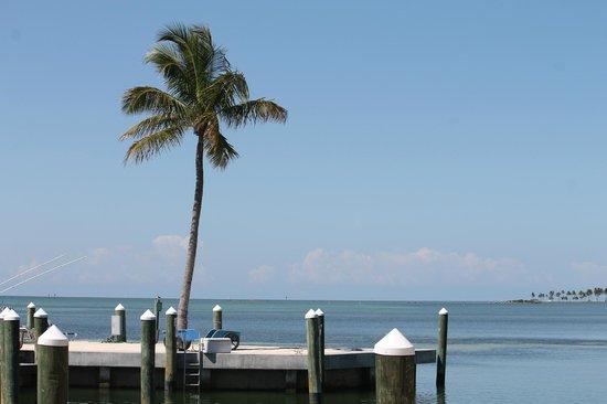 La Siesta Resort & Marina: view