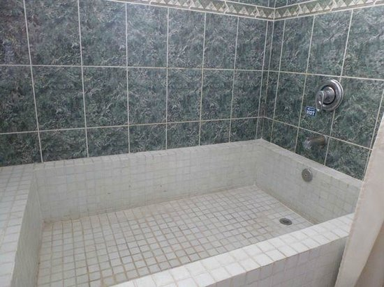 Casa Jalisco: Dated shower