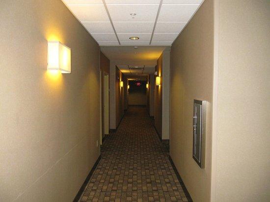Cambria Hotel & Suites: corridor
