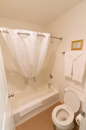 Best Western Colorado River Inn : Tub - shower