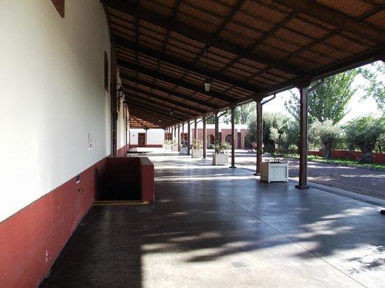 Ampora Wine Tours: Altavista Outside