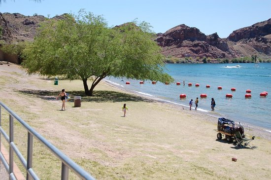 Buckskin Mountain State Park: Shallow kids swimming area with shade tree