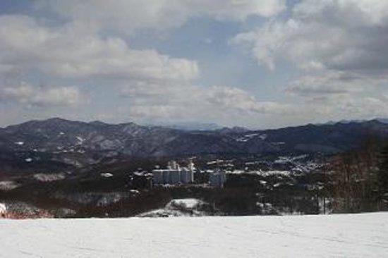 Kusatsu International Ski Place: kusatsu international ski