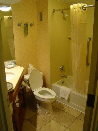 هامبتون إن بوبلار: Bathroom