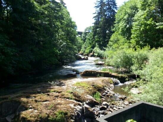Tumwater Falls Park: from Bridge