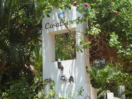 Casablanca: Entrance