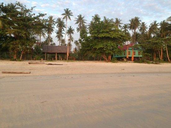 Mutiara Beach Guesthouse: Beach during low tide