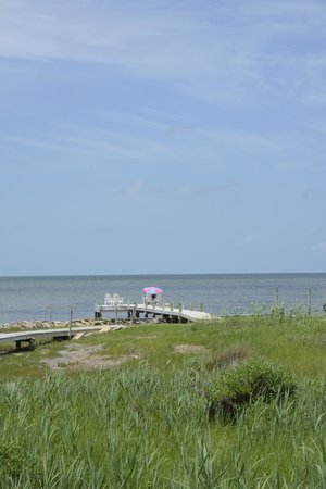 The Inn on Pamlico Sound: View of the dock