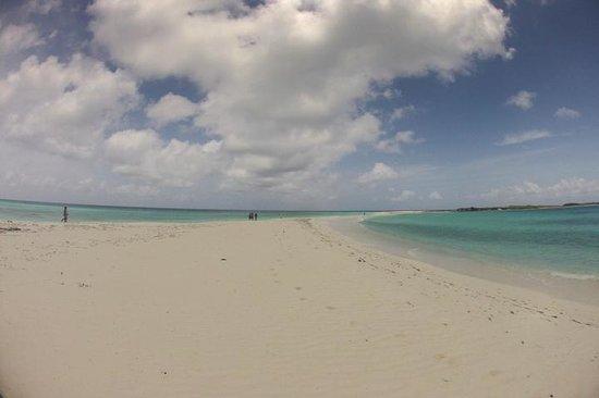 Posada Galeria La Corsaria: Son fotos de la playa,para que crean.
