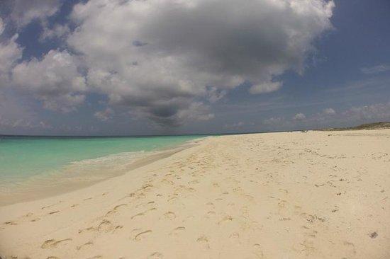 Posada Galeria La Corsaria: Estas son las playas de Los Roques