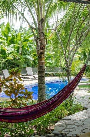 Villas Oasis: Pool Area