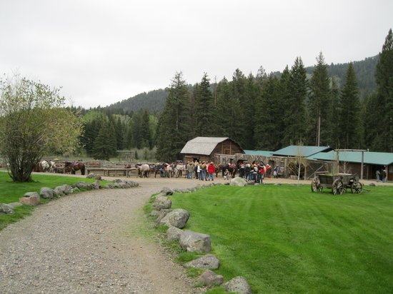 Mountain Sky Guest Ranch: Getting Ready for the morning ride